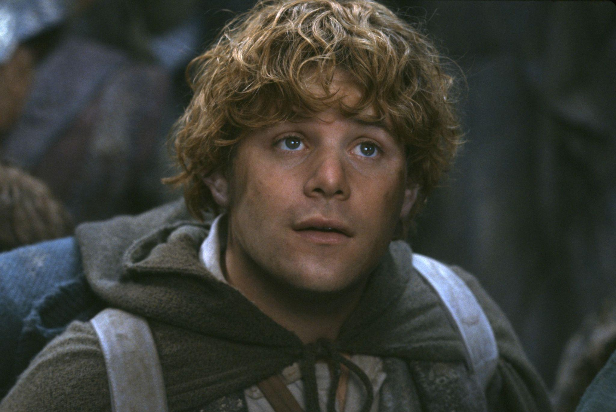 picture-of-sean-astin-in-the-lord-of-the-rings-the-fellowship-of-the-ring-large-picture