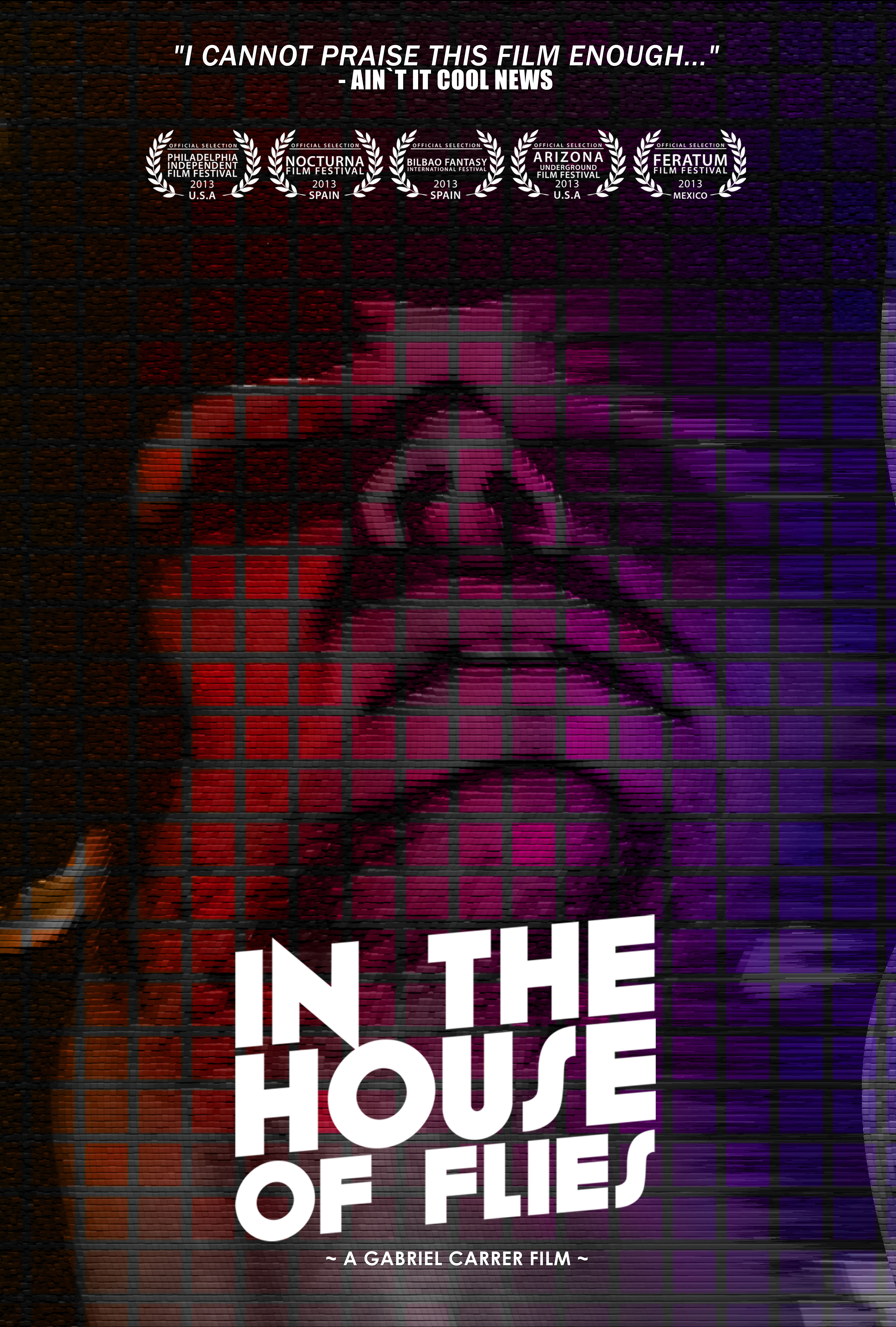 In The House Of Flies - DVD Cover