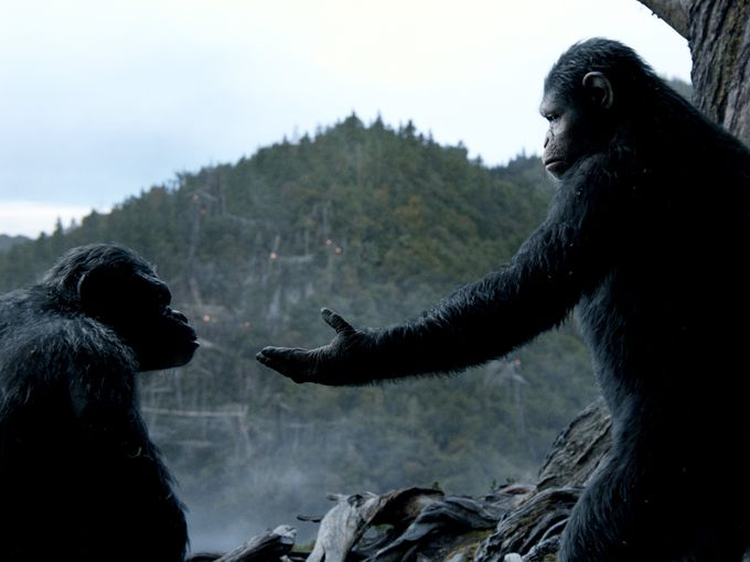 10-dawn-of-the-planet-of-the-apes