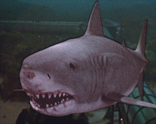 Does This 'Jaws 3D' Scene Have the Worst Special Effects of All Time