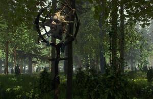Forest_U5