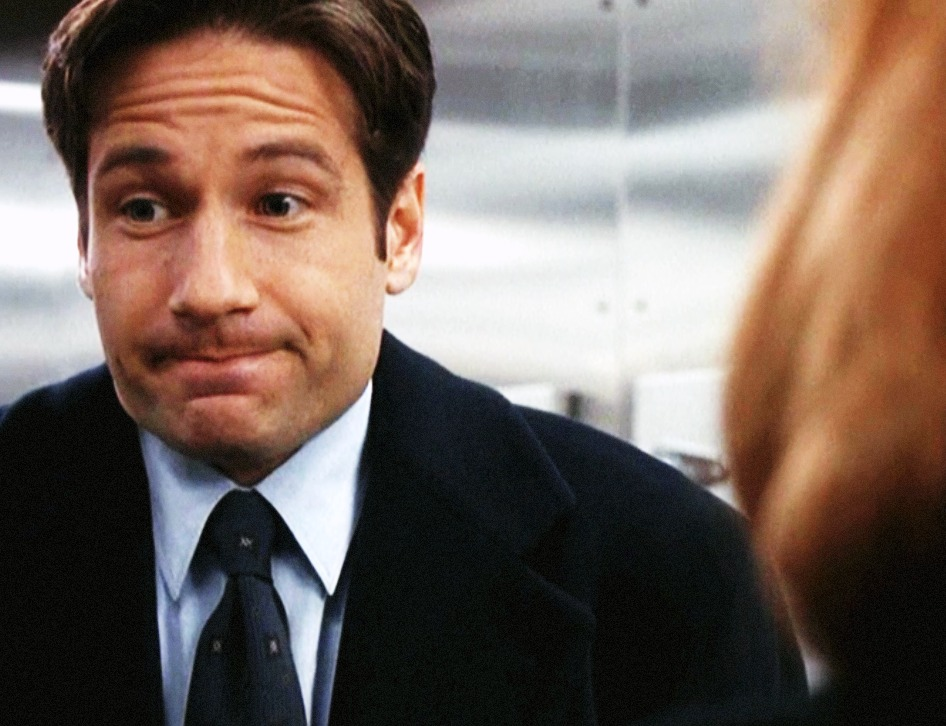 """The X-Files'"" David Duchovny Calls Mulder..."