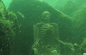 underwaterskeleton