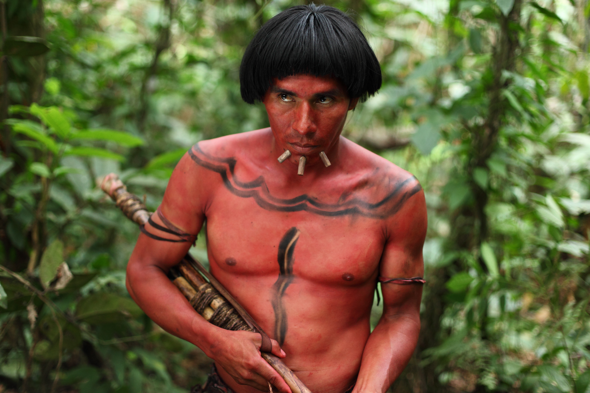 Exclusive New Taste Of The Green Inferno