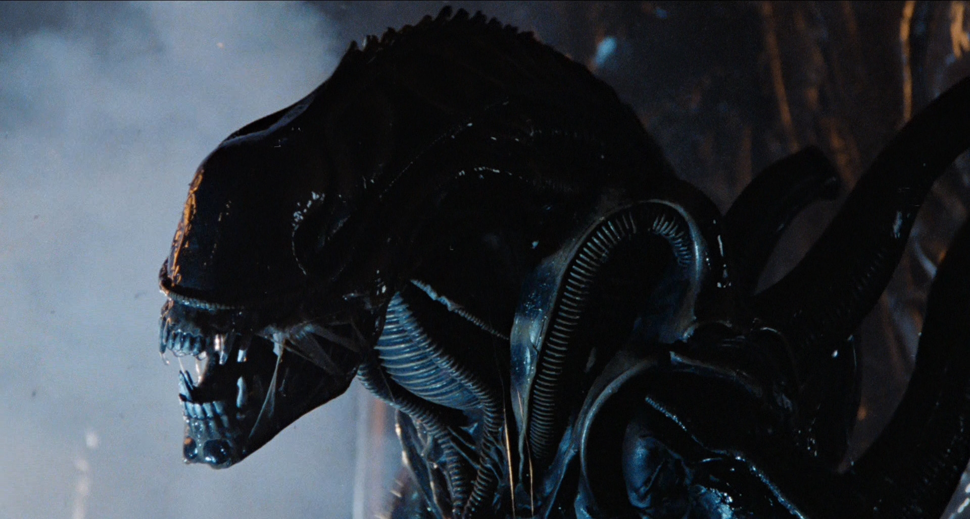 Aliens Xenomorph_1986_01
