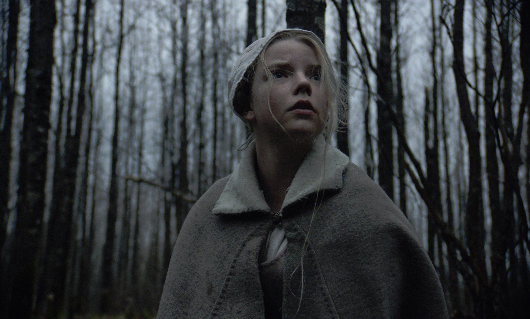 10 Must-See Independent Horror Films of 2016