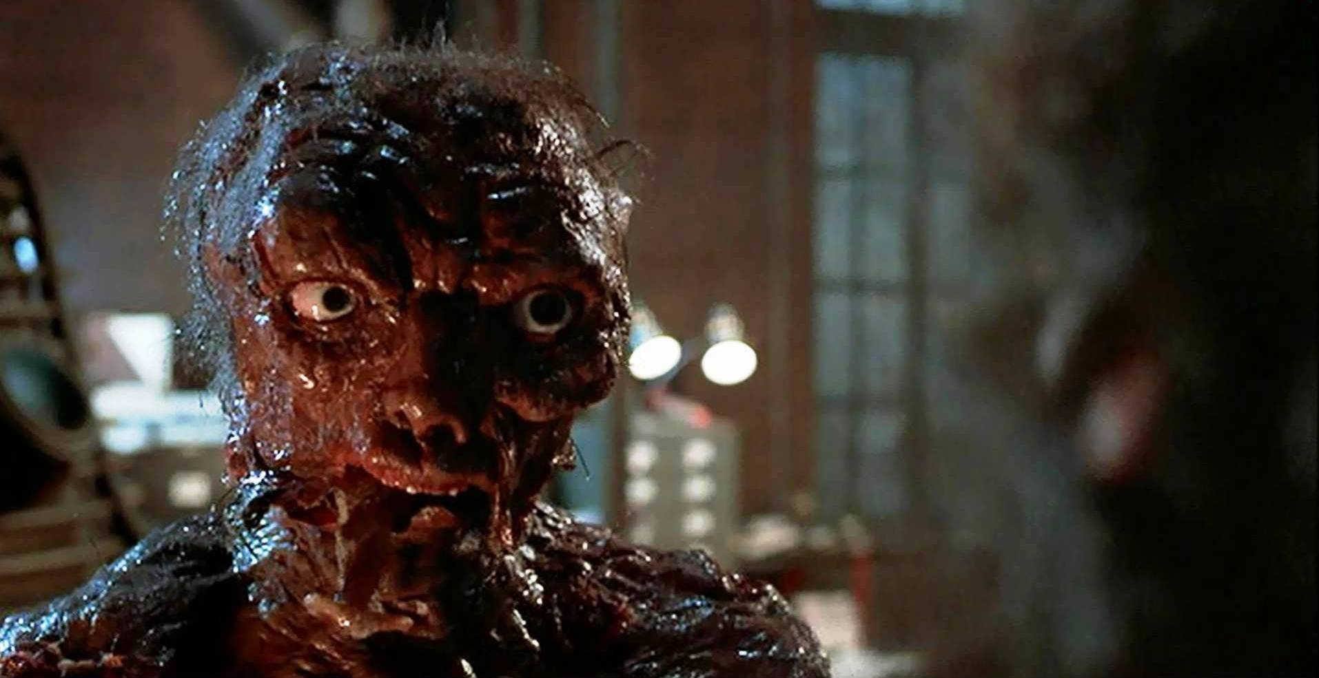 The Fly Anniversary
