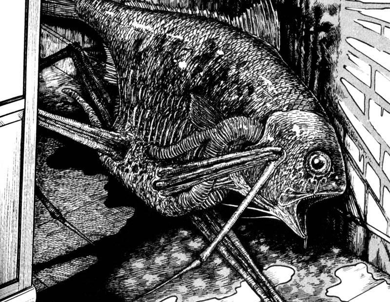 the masterful terror of junji ito bloody disgusting
