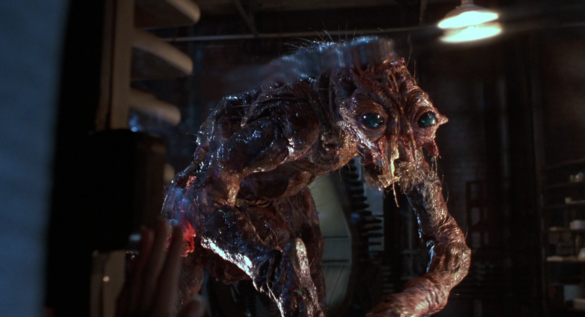 Fox is Remaking 'The Fly' Again; Here's Who May Direct - Bloody Disgusting