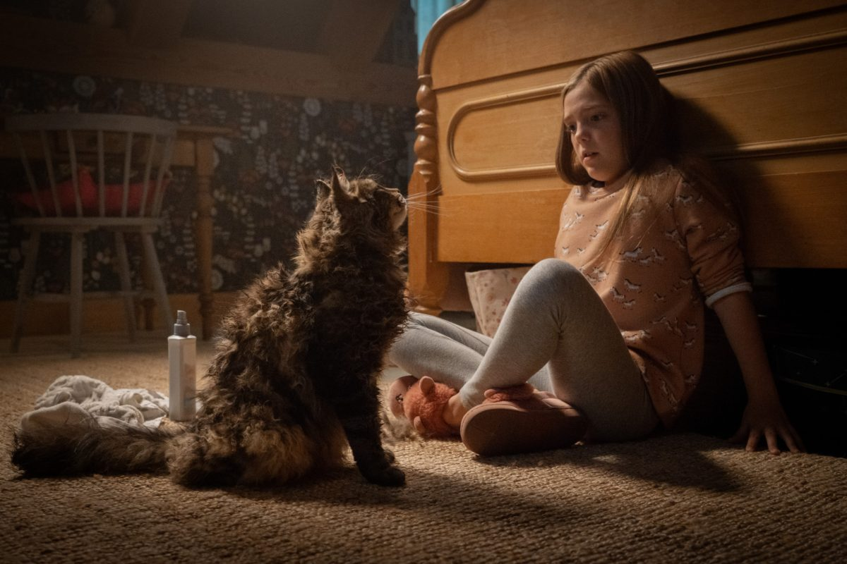 Movie Poster 2019: Massive 'Pet Sematary' Image Gallery Rises From Sour
