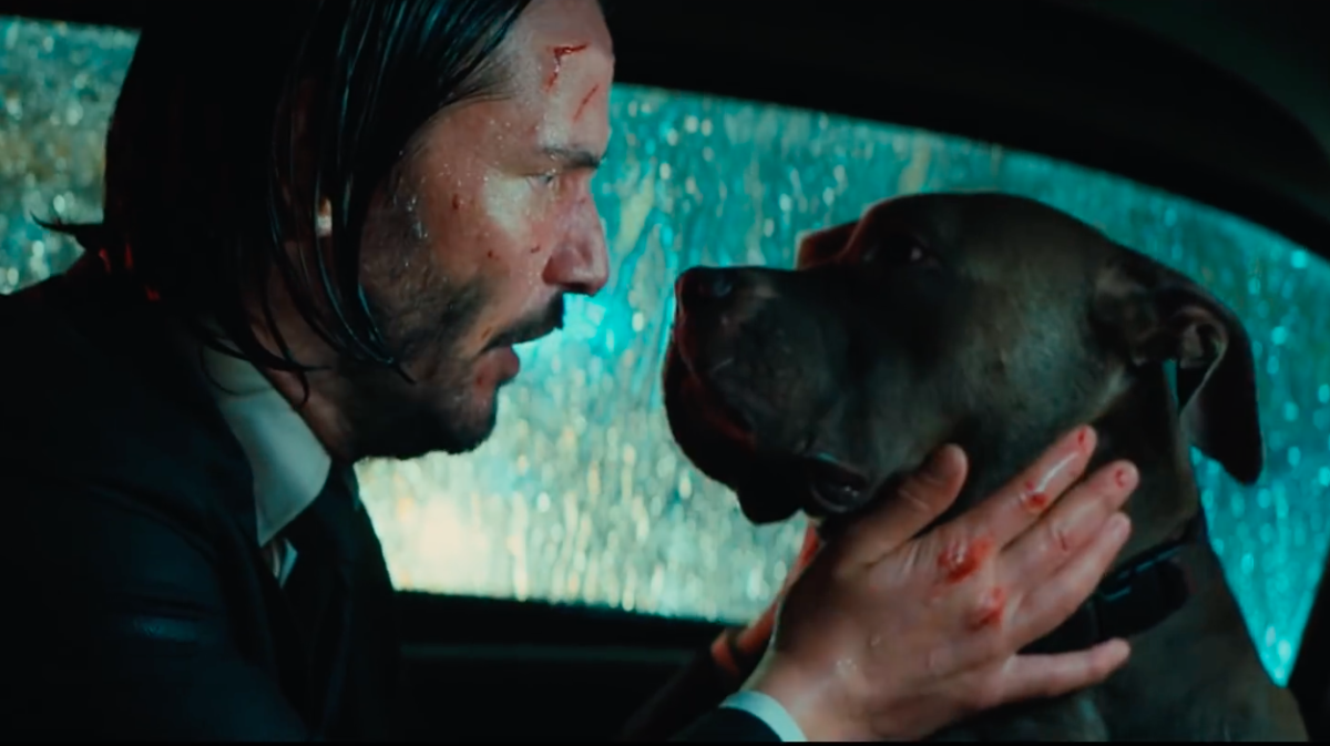 John Wick Clip Shows a Man and His Best Friend