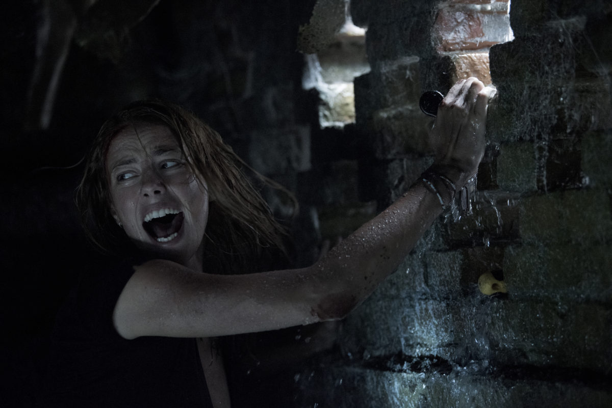 Alex Aja's 'Crawl' Getting 4DX Release on July 7th [Exclusive]