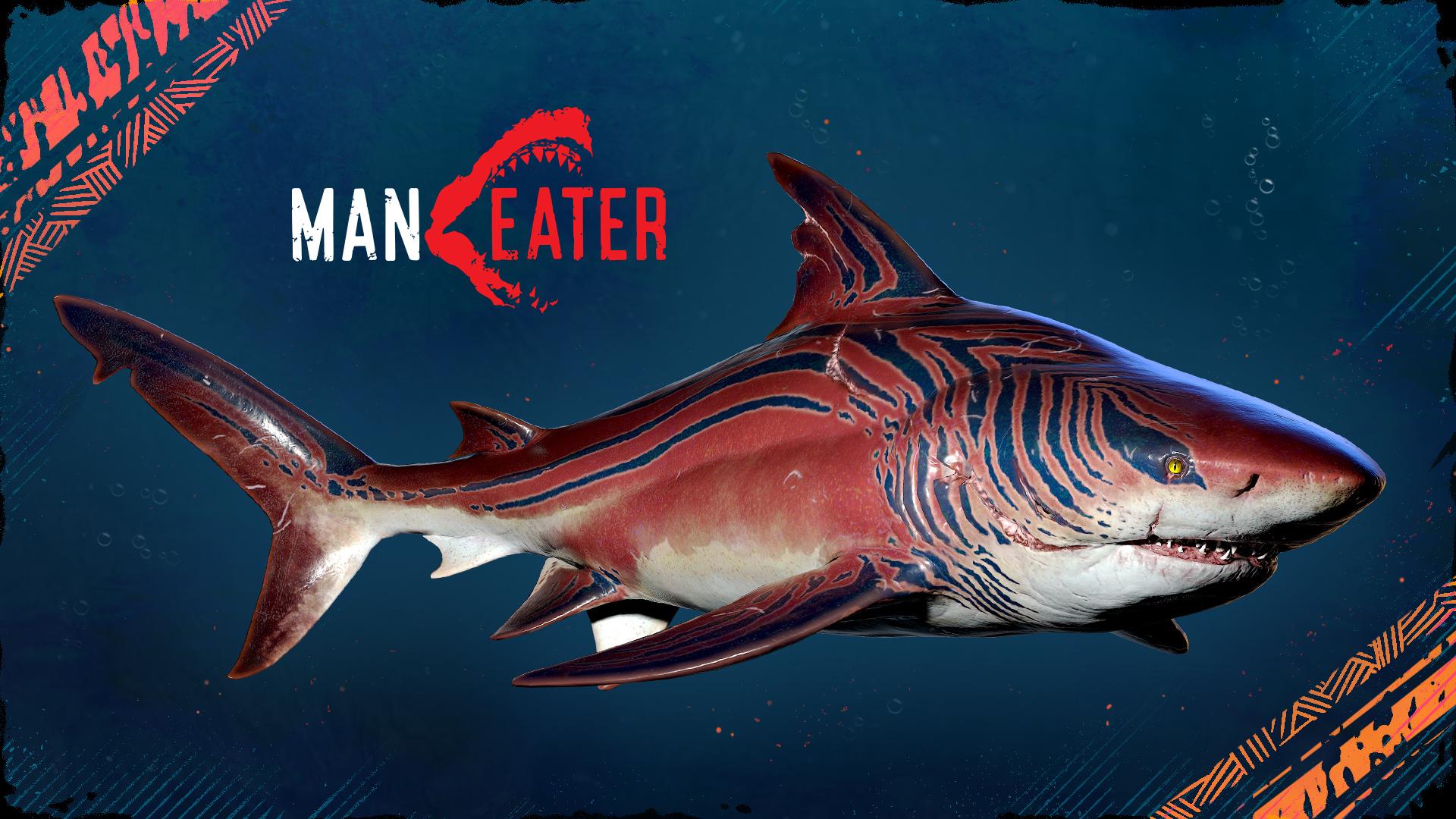 "Maneater': Tiger Shark Evolution Currently Free for ""Shark Week ..."